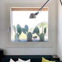 outdoor_034_schwarz-cactus